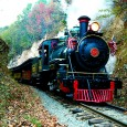 One of the most historic railroads in Southern Appalachia, the East Tennessee &amp; Western North Carolina,ran from Johnson City, TN, to Boone, NC, from the late 1800s until 1950. It was born when the Tennessee state legislature granted a charter to construct the railroad in 1866. 
