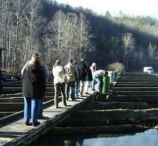 Appalachian Fish Farming