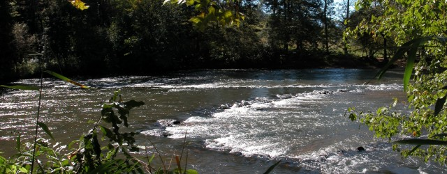 Fishing weirs are obstructions created in aquatic environments in order to trap or guide fish to a desired location. […]