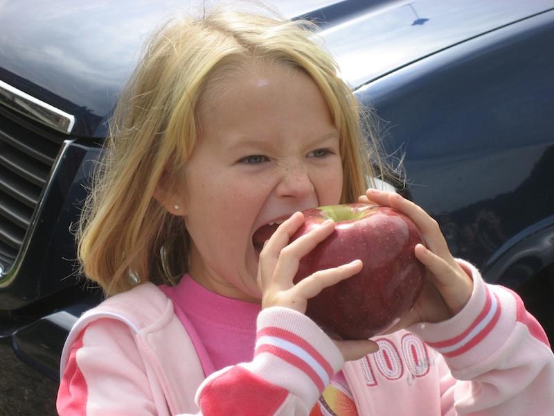 essay on healthful eating