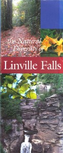 Natural Diversity of Linville Falls