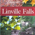 The Natural Diversity of Linville Falls