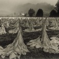 For over 100 years burley tobacco has been an important cash crop in western North Carolina as well as in […]