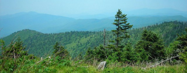 """The Appalachian Trail extends 2,160 miles from Springer Mountain in North Georgia to Mount Katahdin in northern Maine. """"Through Hiker"""" […]"""