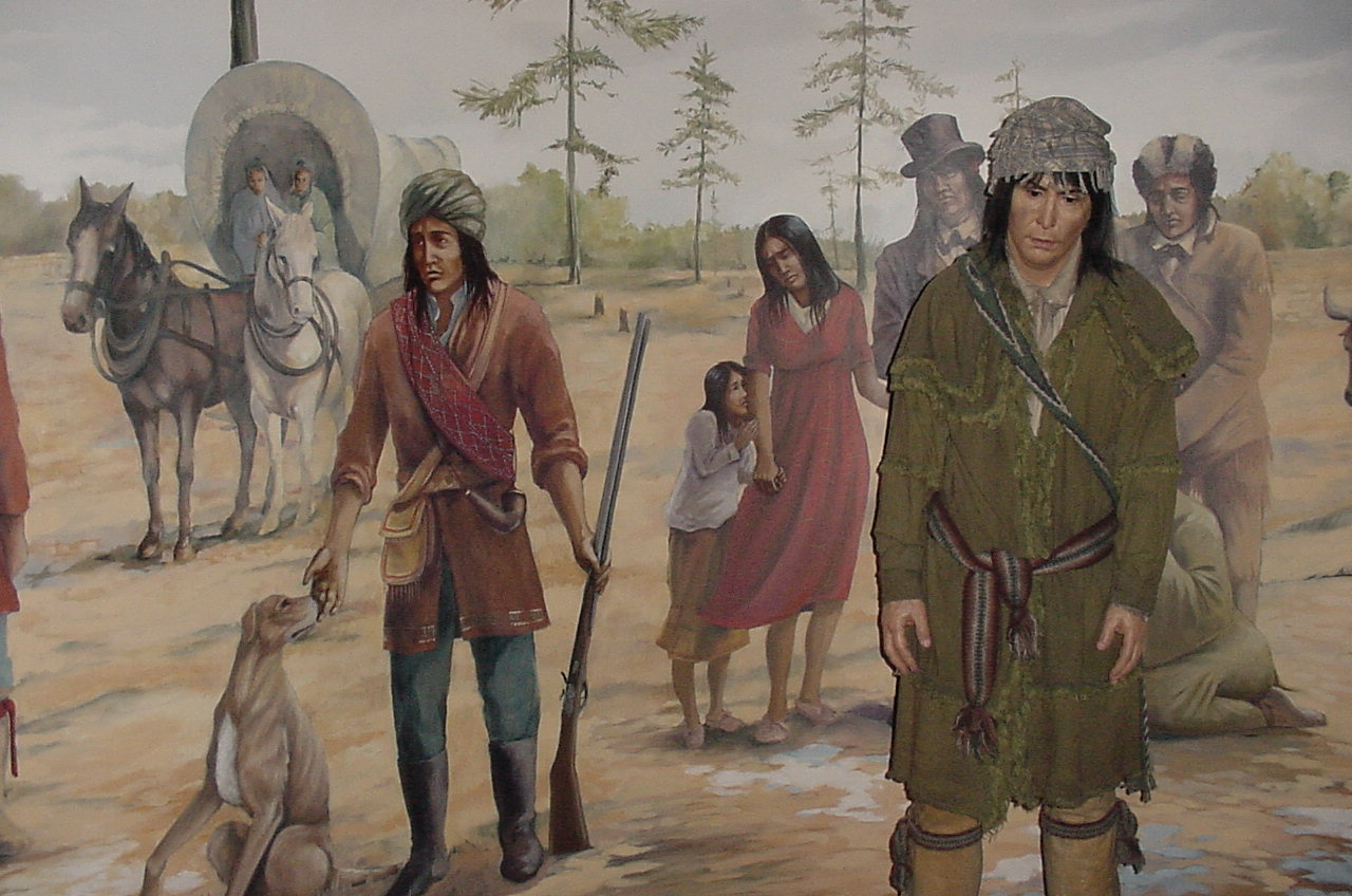 the cherokee peoples' trail of tears Home research our records  american indian records in the national archives  records pertaining to cherokee removal,  (often referred to as the trail of tears .