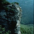 The geology of the Appalachian Mountain system is unique and complex, especially in the Blue Ridge Province. Unlike most regions […]