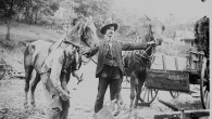 Although horses and mules have been replaced by tractors on most American farms, some farmers in Appalachia still use […]